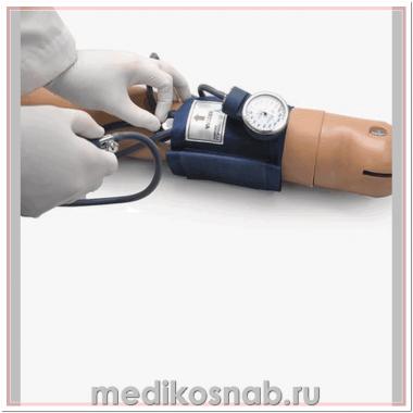 Тренажер для обучения измерению артериального давления с динамиками