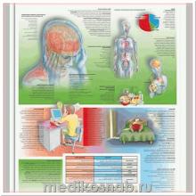 Плакат медицинский Головные боли