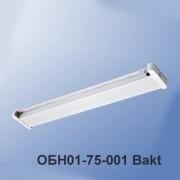 Бактерицидный облучатель ОБН01-75-001 Bakt без ламп, стартеров, провода